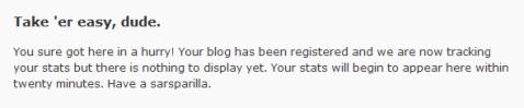 WordPress Statistics plugin error