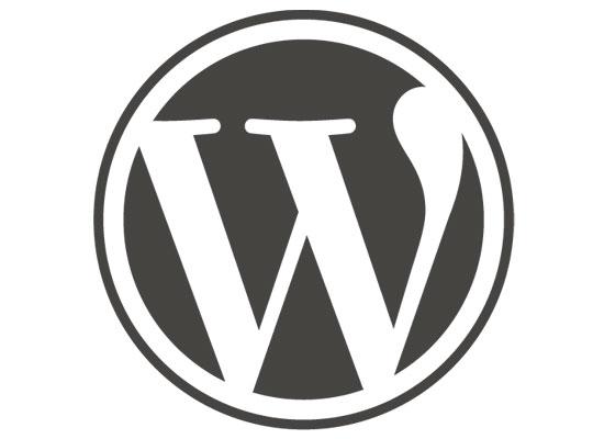 6 Tips for a Safer WordPress Hosted Website
